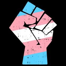 Trans Raised Fist