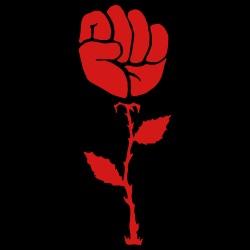 Raised Fist Rose