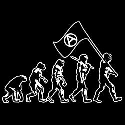 Anarchist evolution