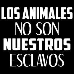 Los animales no son nuestros esclavos