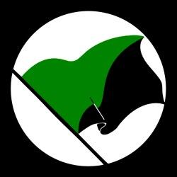 Green & Black flag (Green anarchism)
