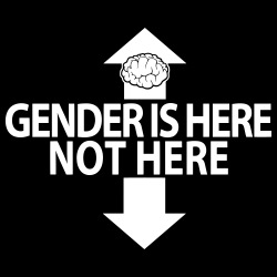 Gender is here, not here