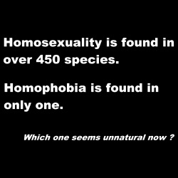 Homosexuality is found in over 450 species. Homophobia is found in only one. Which one seems unnatural now?