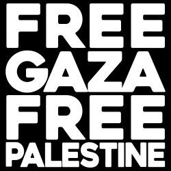 Free Gaza Free Palestine