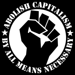 Abolish capitalism by all means necessary