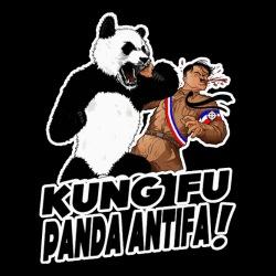 Kung fu panda antifa!