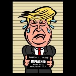 Donald J. Trump impeached