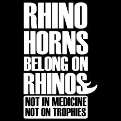 Rhino horns belong on rhinos. Not in medicine. Not on trophies