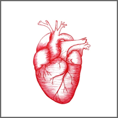 Anatomical Heart - Men's Hoodie
