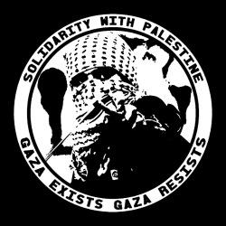 Solidarity with Palestine - gaza exists, gaza resists