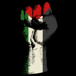Palestine Activist