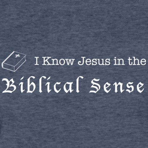 Biblical Sense - Fitted Cotton/Poly T-Shirt by Next Level