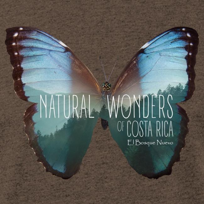 Butterfly_rainforest_3