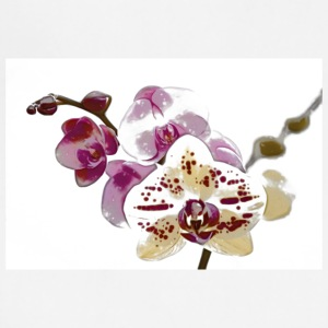 Phalaenopsis Orchids - Adjustable Apron