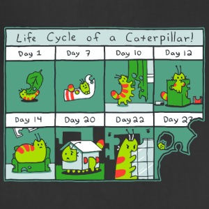 The Life Cycle of a CATerpillar - Adjustable Apron