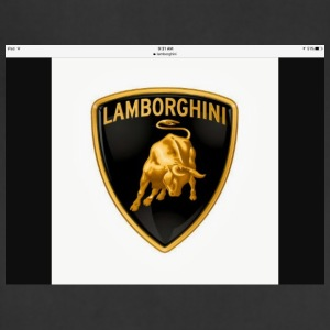 Lambos - Adjustable Apron