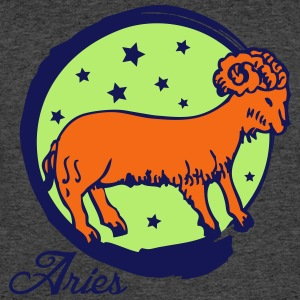 Aries - Men's 50/50 T-Shirt