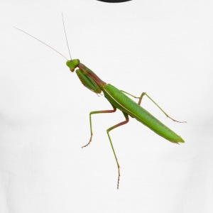 Praying Mantis - Men's Ringer T-Shirt