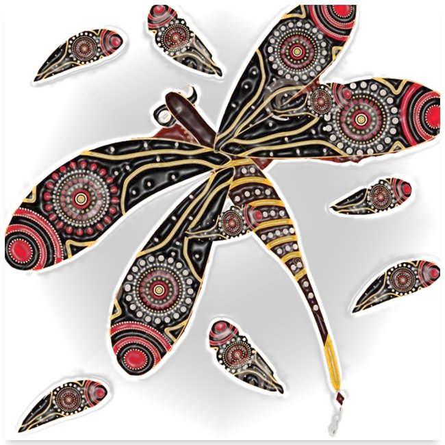 Billabong butterfly
