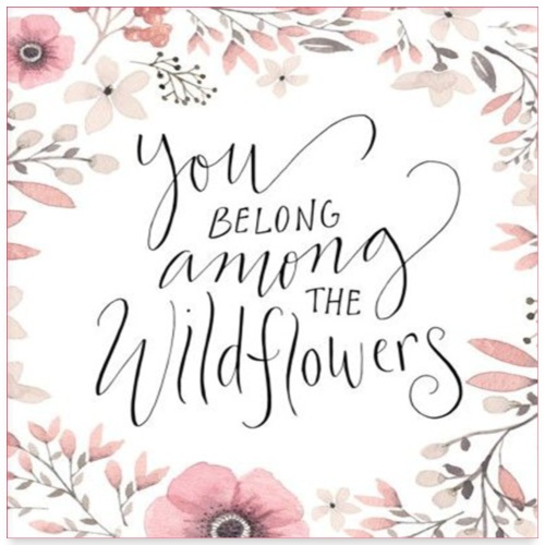 You Belong Among Wildflowers - Poster 24x24