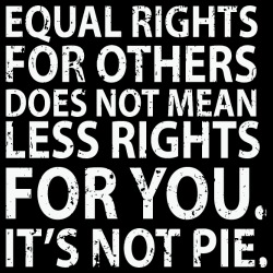 Equal rights for others does not mean less rights for you. It\'s not pie.