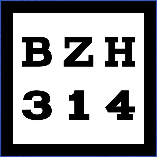 BZH314 Games Big Logo