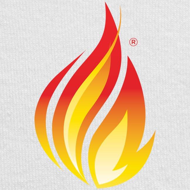 HL7 FHIR Flame Logo