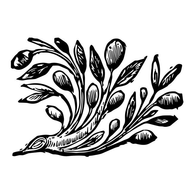 Decorative Bough - Branch Motif