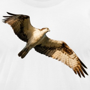 Osprey - Men's T-Shirt by American Apparel