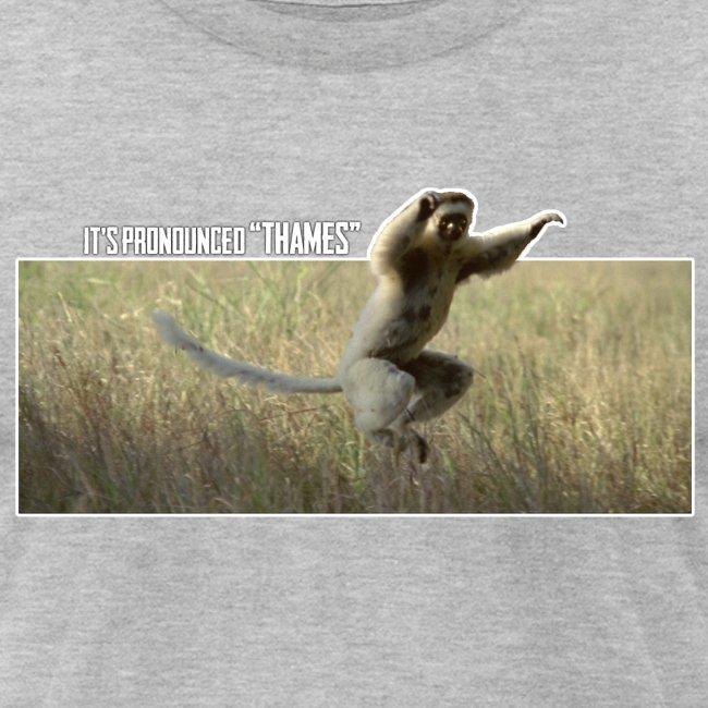 correction monkey