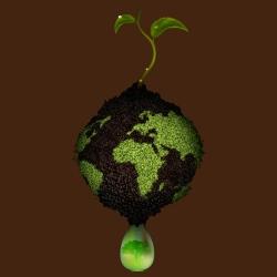 T-shirt Environnementaliste