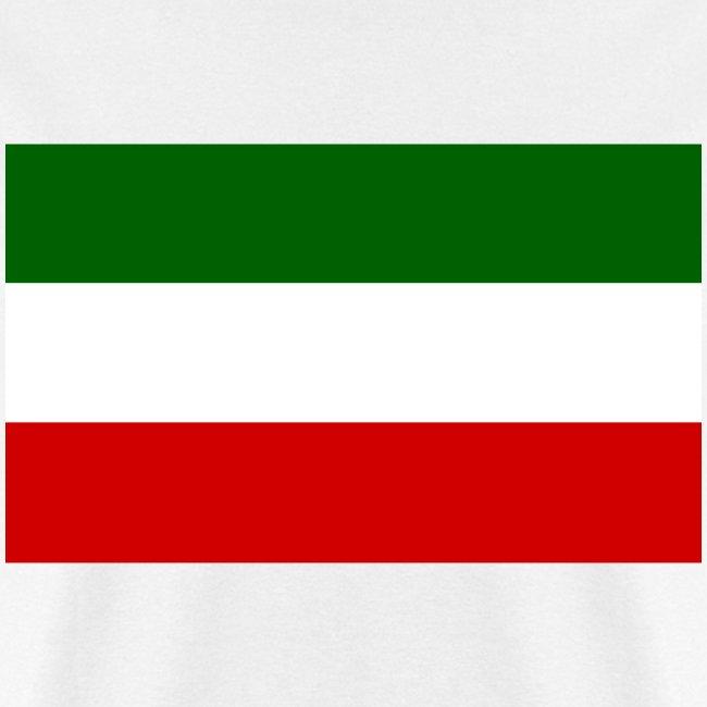 patriote flag of the patriote movement l