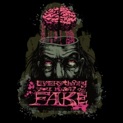 Everything you know is fake