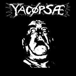Yacopsae