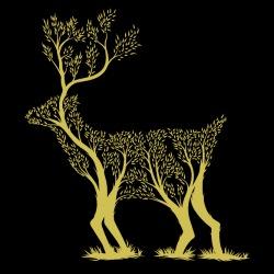 Eco-friendly T-shirt