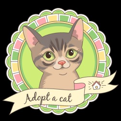 Adopt a cat