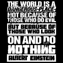 The world is a dangerous place not because of those who do evil, but because of those who look on and do nothing (Albert Einstein)