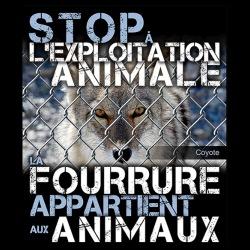 Stop à l\'exploitation animale la fourrure appartient aux animaux