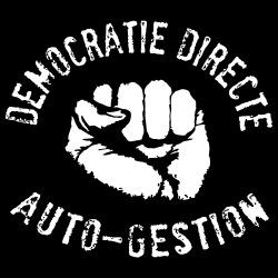 Démocratie directe auto-gestion