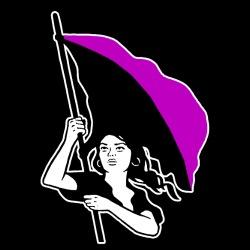 Anarcha-Feminist Flag