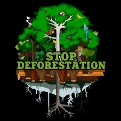 Stop deforestation