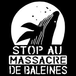 Stop au massacre de baleines