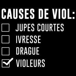 Causes de viol: violeurs