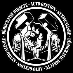 Démocratie directe auto-gestion syndicalisme