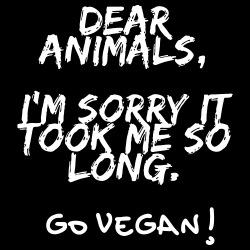 Dear animals, i\'m sorry it took me so long. Go vegan!
