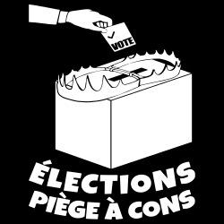 Élections, piège à cons
