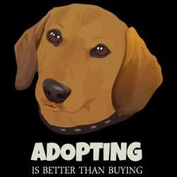 Adopting is better than buying