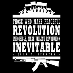 Those who make peaceful revolution impossible, make violent revolution inevitable  (John F. Kennedy)