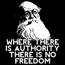 Where there is authority there is no freedom (Petr Kropotkin)