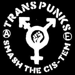 Trans punks smash the cis-tem